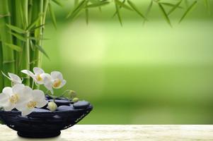 bien-être image, institut de beauté espace athena, fleurs soins